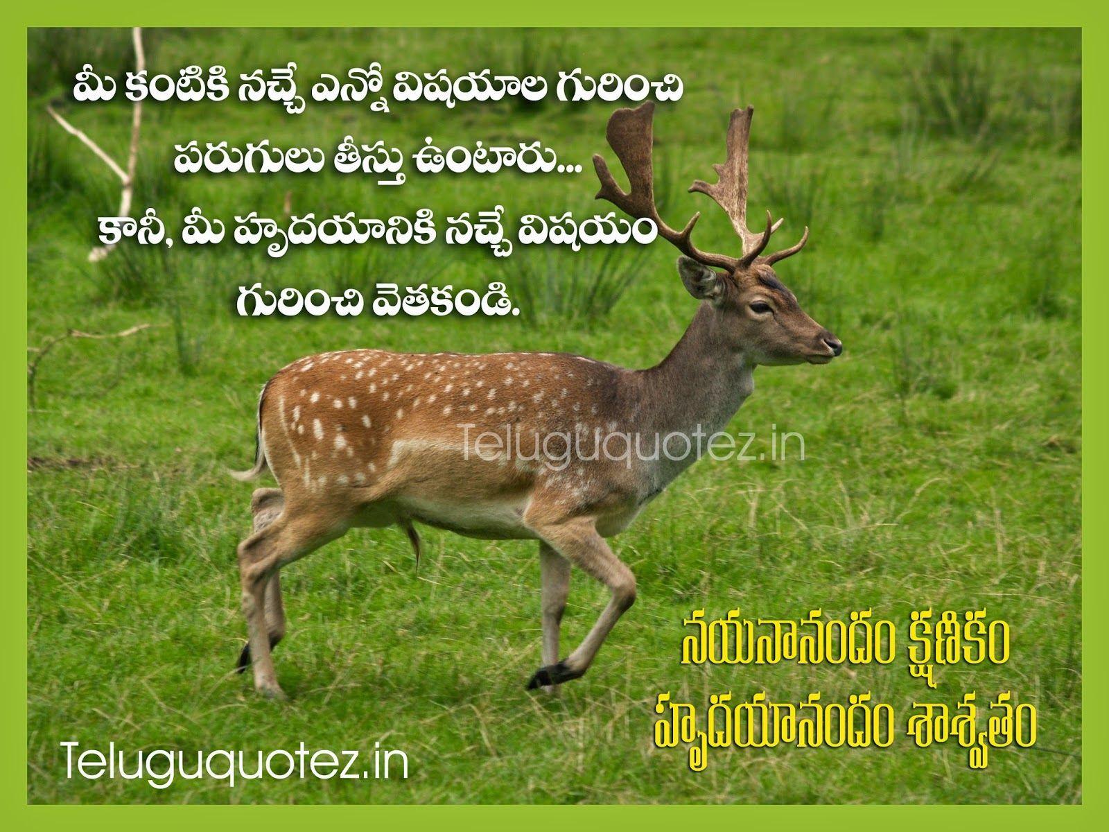 Teluguquotezin Positive Life Quotes In Telugu Language Telugu