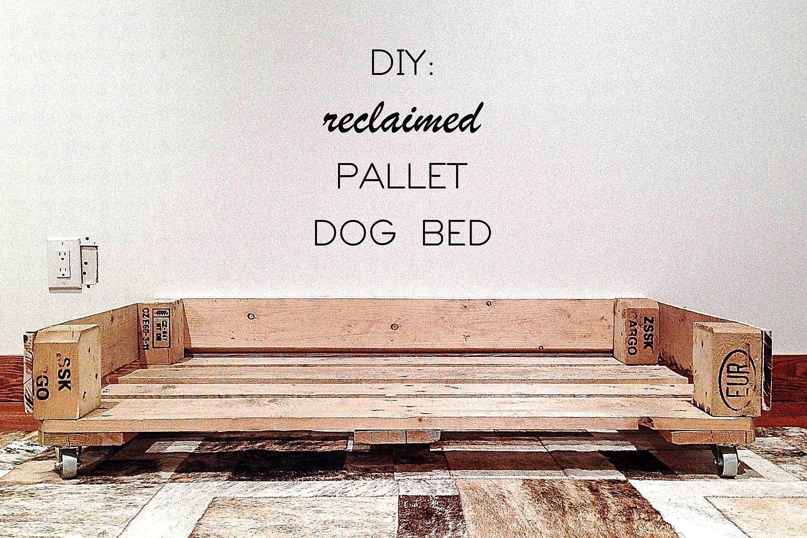 Reclaimed Wood Pallet Dog Bed Tutorial Diy Dog Beds