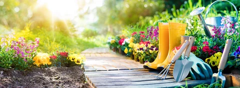 For The Love Of Gardens – UntilGone.com. While there are gardener's in all of us, some of us need a lot more help, this guide will get you started.