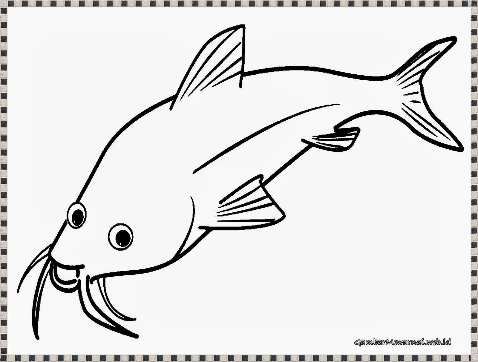 Belajar Mewarnai Gambar Ikan Download Kumpulan Gambar