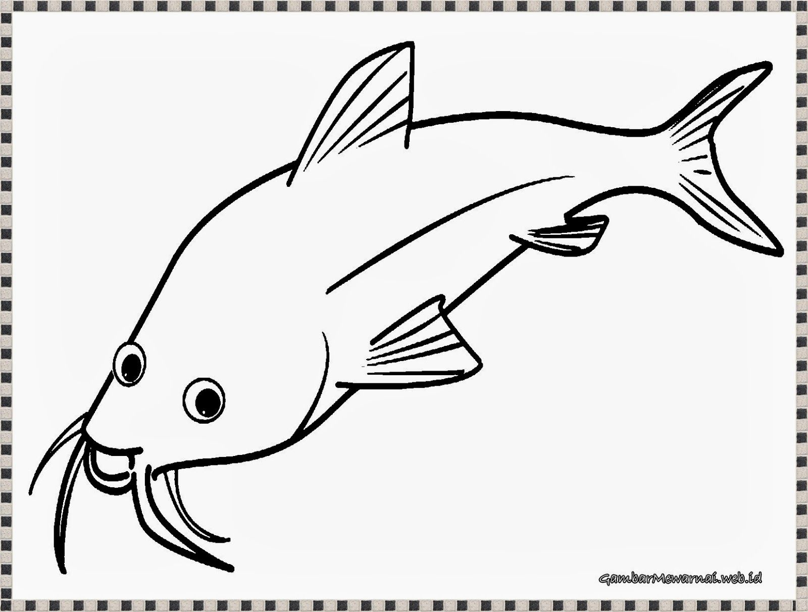 belajar mewarnai gambar ikan patin