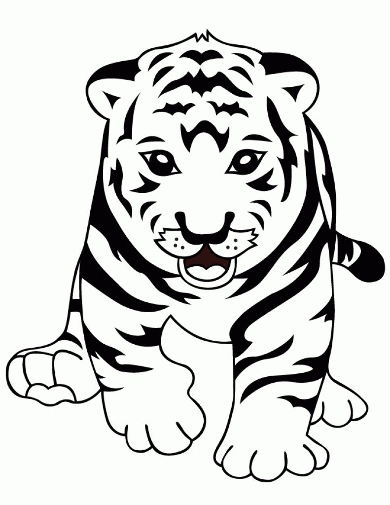 curious baby tiger coloring page cute