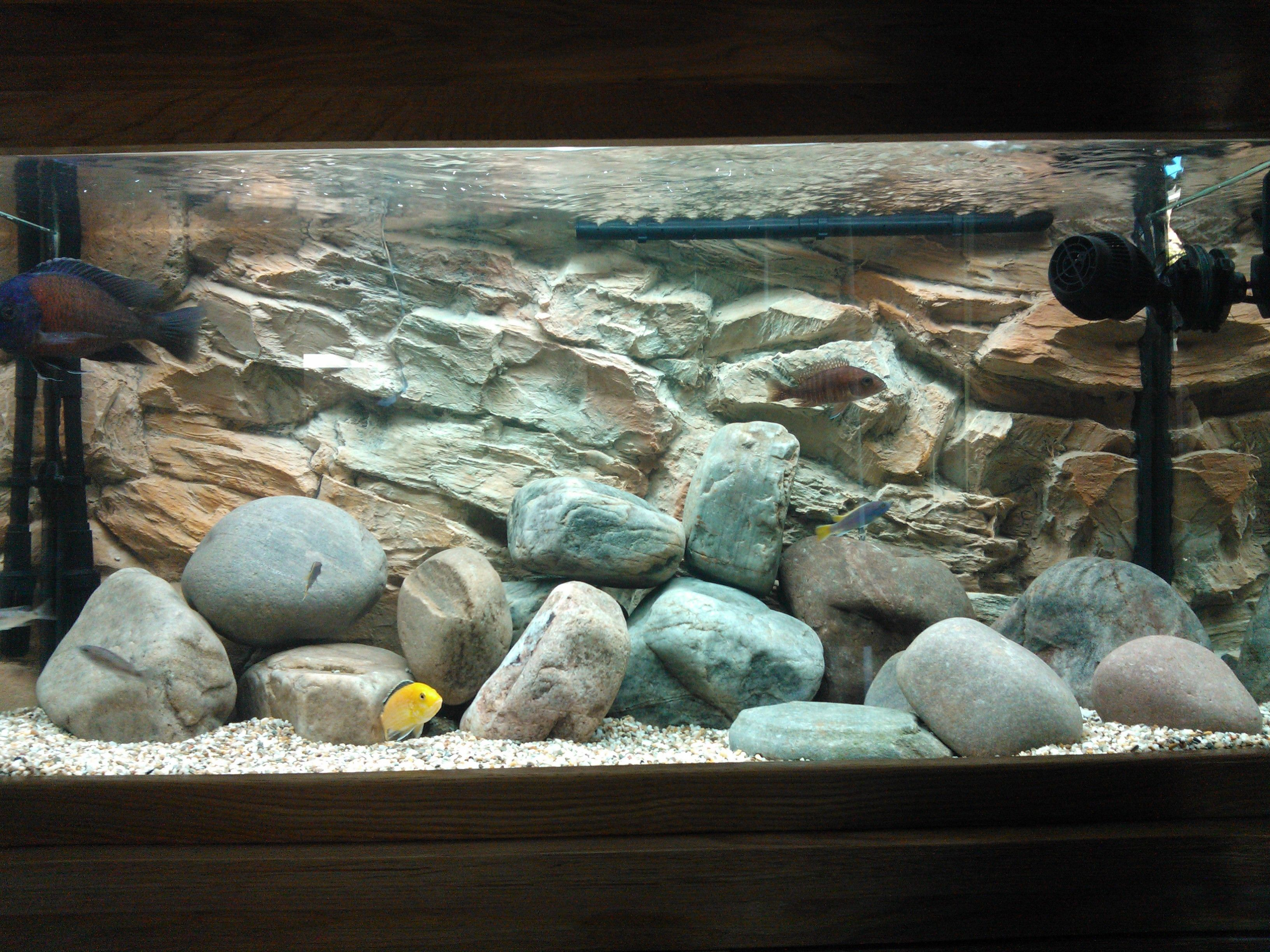 Another Cool Decoration Idea To Match Natural River Boulders With