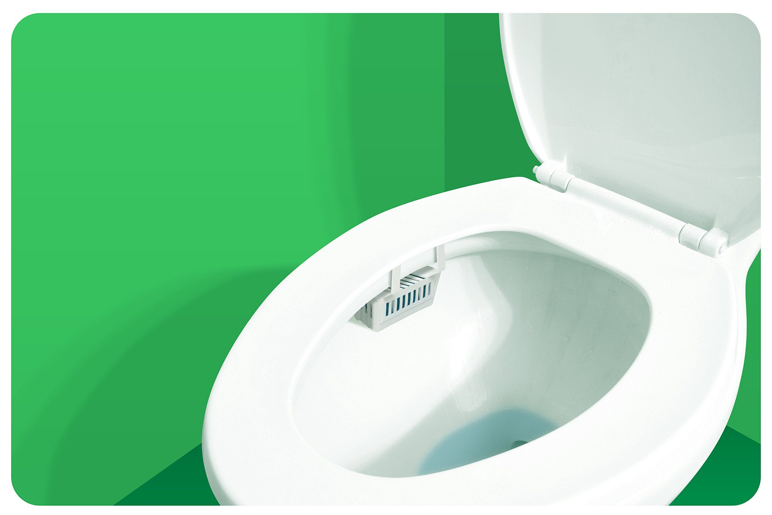 Big D 661 Toilet Bowl Rim Hanger With Nonpara Block Evergreen Fragrance With Enzymes 1500 Flushes Pack Of 12 Ideal For Restrooms In Toilet Bowl Toilet Hanger