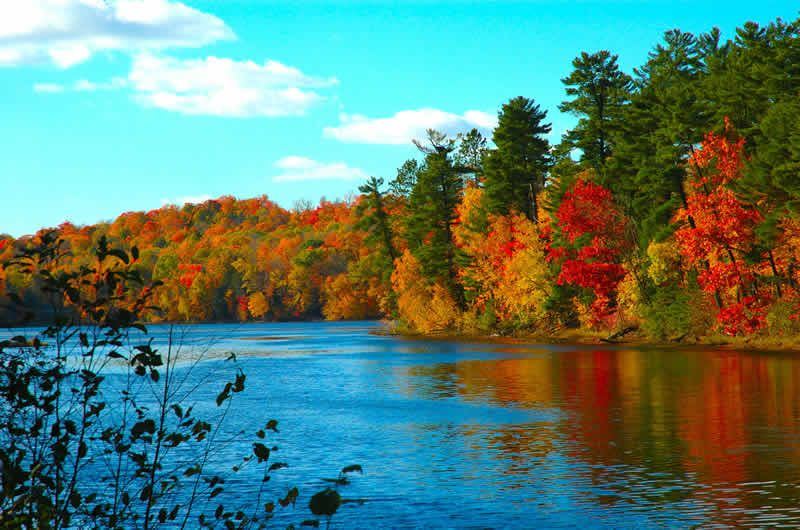 Fall Foliage Nature Pontoon Boat Tour Scenery Wallpaper Desktop Wallpaper Fall Fall Desktop Backgrounds