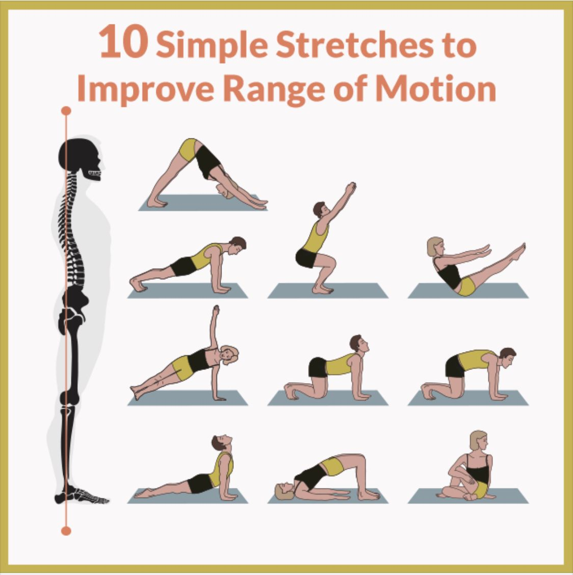 Range Of Motion Stretches Health Motion Health Fitness