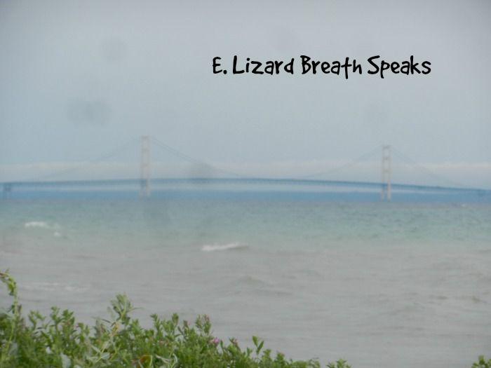 http://www.elizardbreathspeaks.com/2014/10/mackinaw-mill-creek-mackinaw-city.html