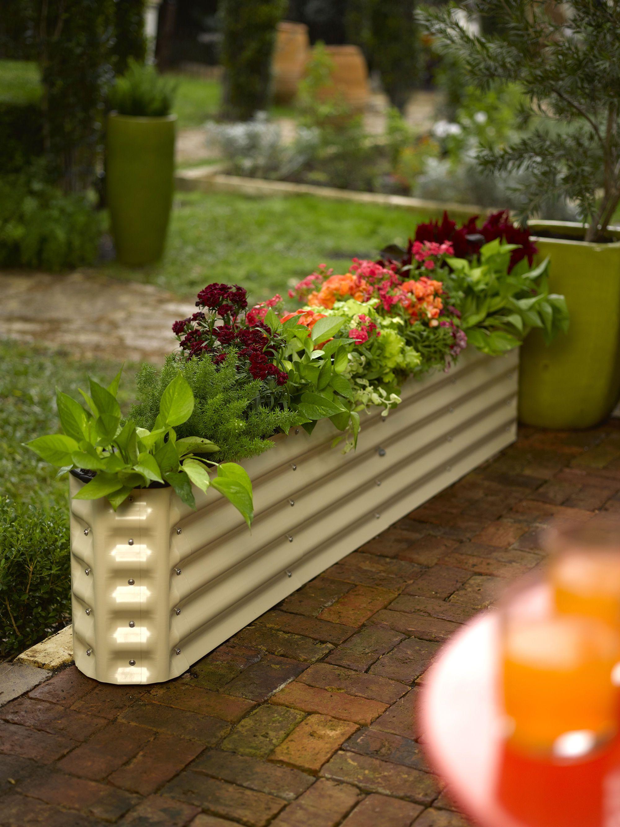 cedar bed kit store garden raised