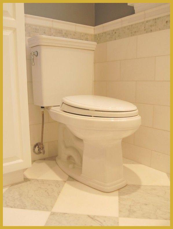 Garcinia poop picture 2