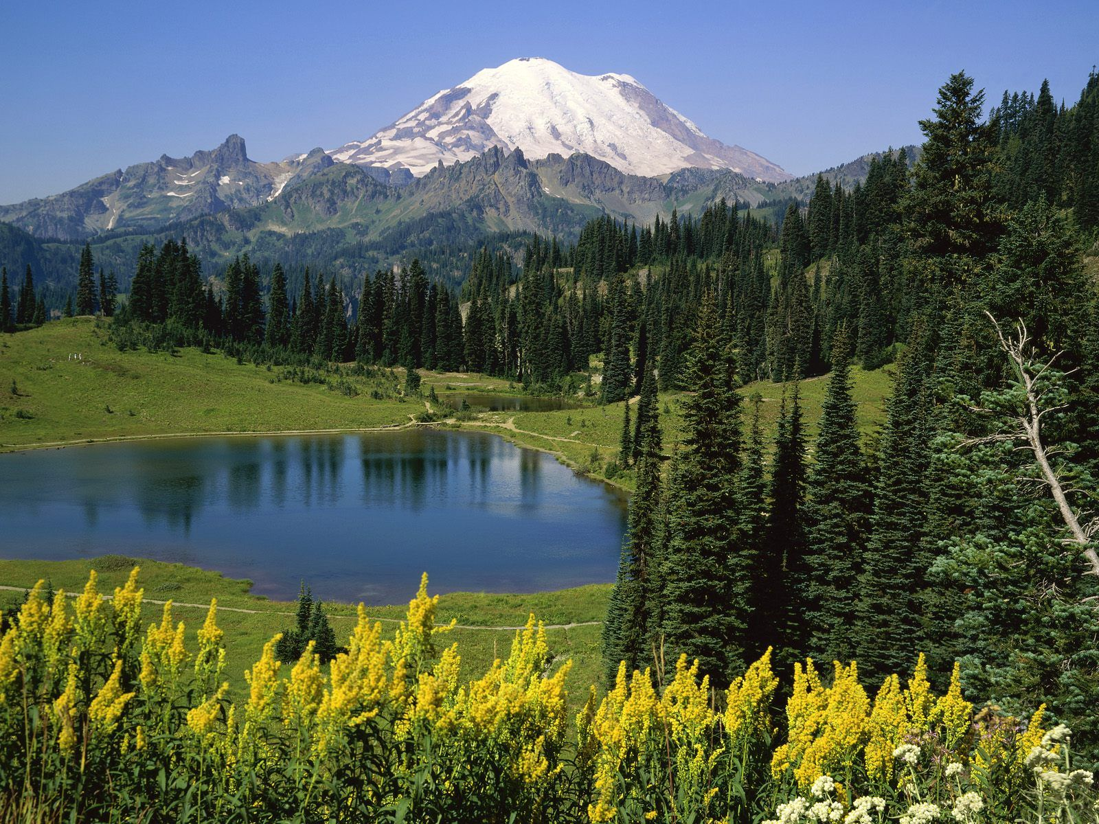washington state photos nature | Fun Things to Do in Washington State |  Smart Destinations