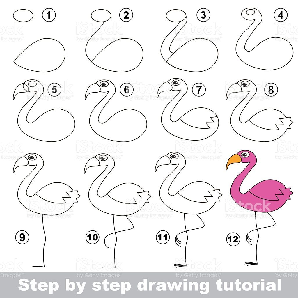 Drawing Tutorial For Children How To Draw The Funny Flamingo