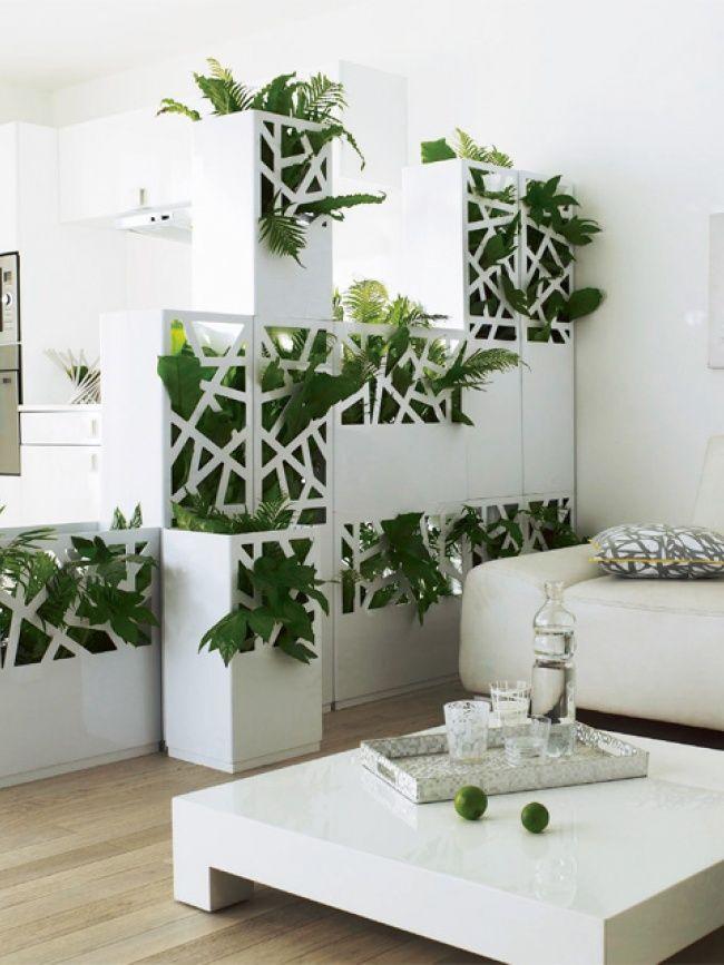 Entre nous les plantes cloisons design et plantes for Grande plante salon