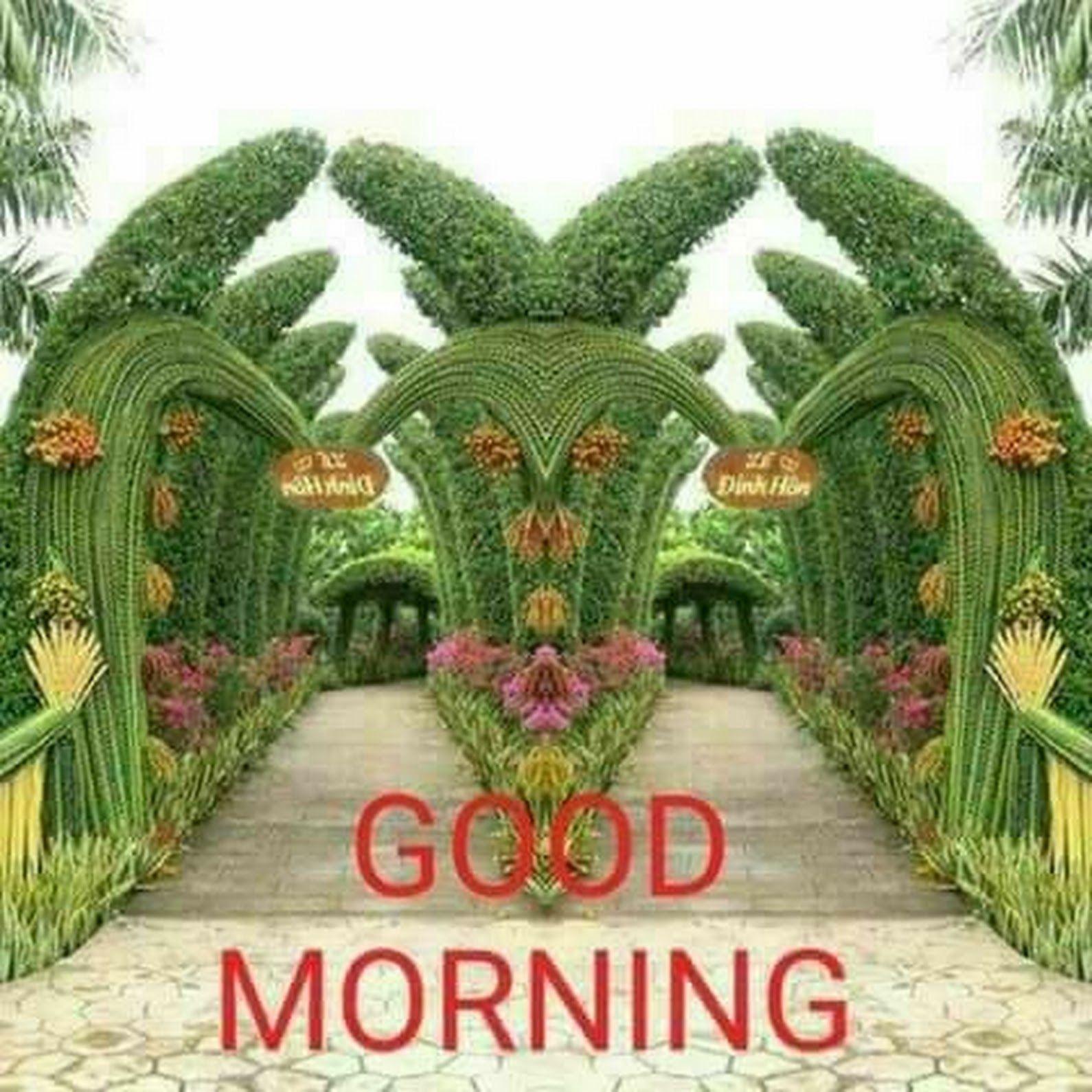 Rajiv Jain Google Good Morning Morning Quotes Morning