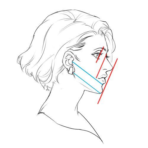 線を使ってゆがみをチェック!バランス良く顔を描く5つのポイント   いちあっぷ