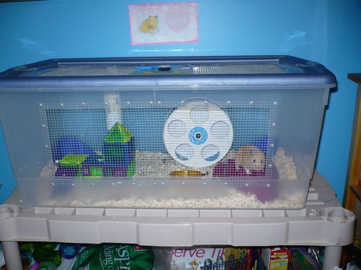 Diy Hamster Bin Cage Hamster Pinterest Hamster Bin Cage