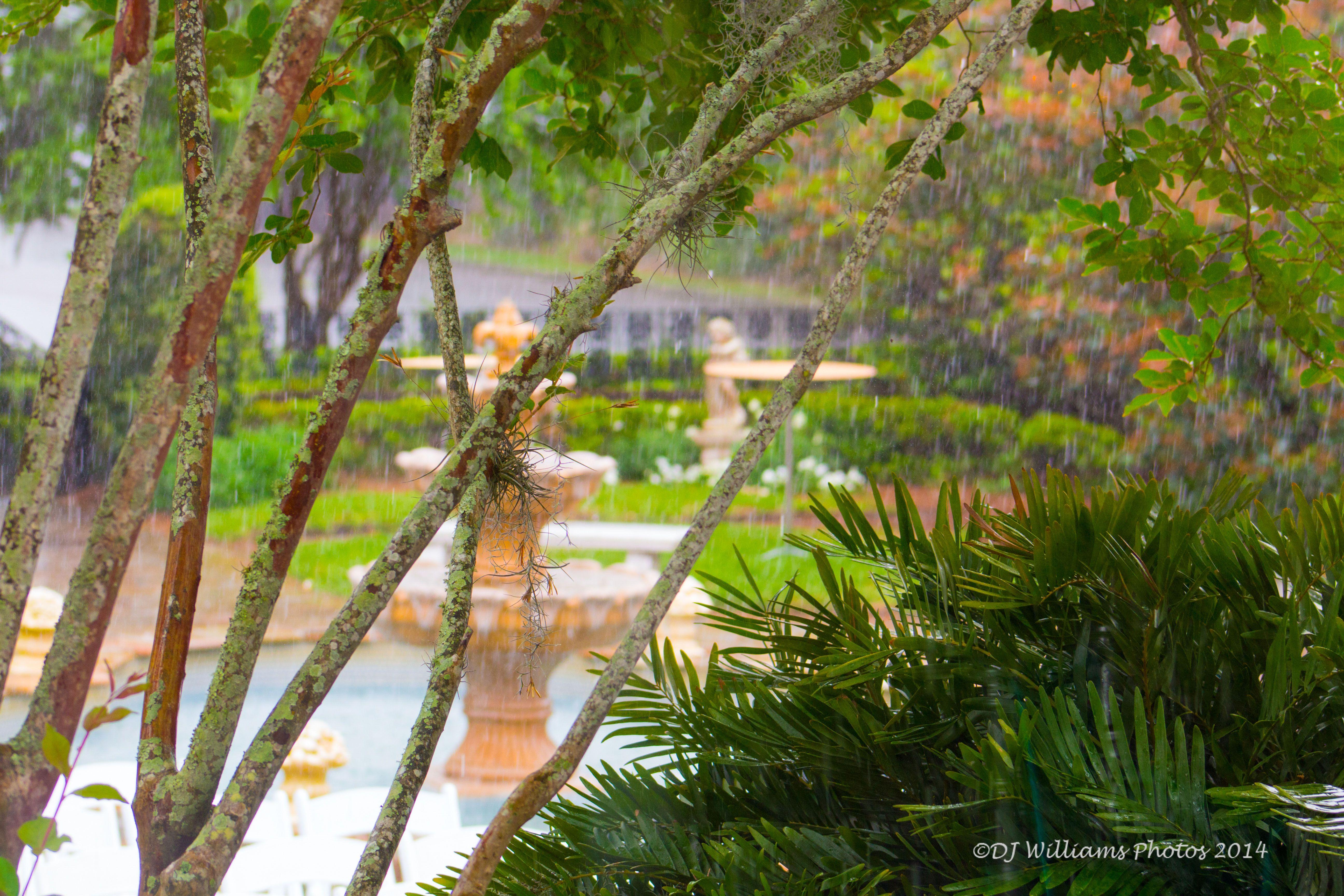 Taken at the Garden Club in Jacksonville, FL Dj photos