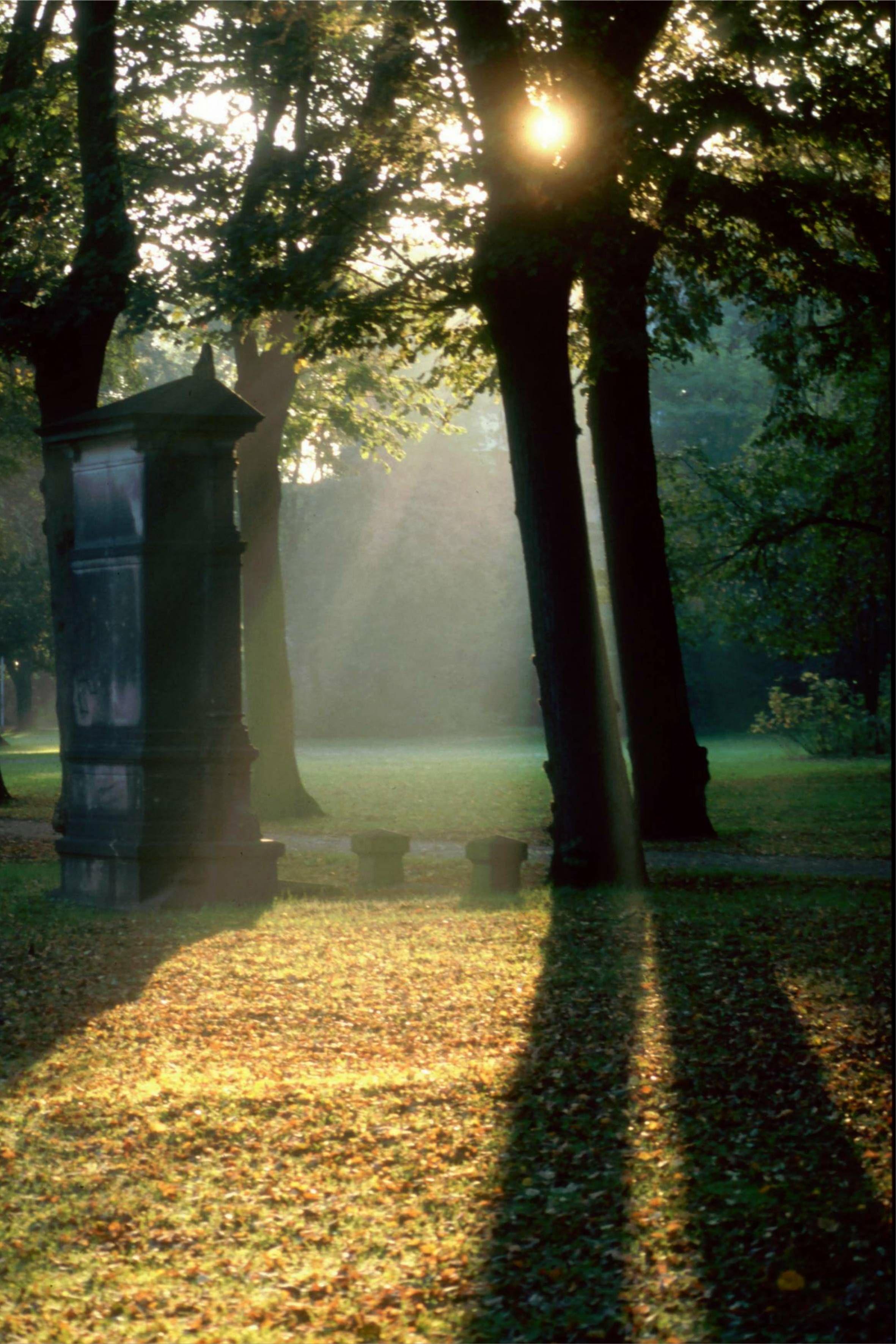Der Marienfriedhof in Hildesheim (58)