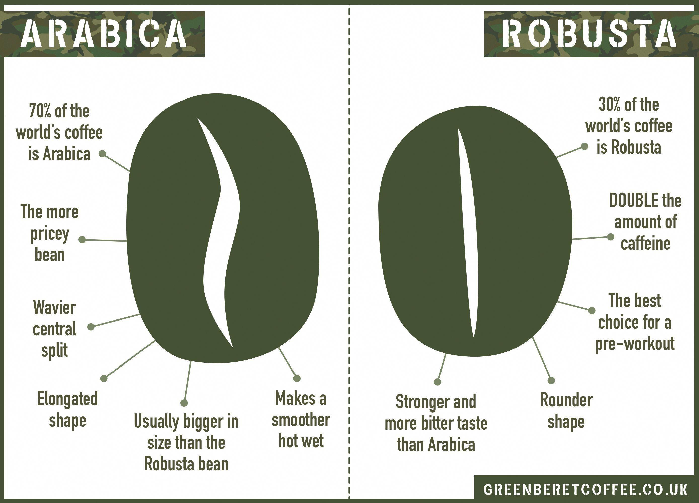Arabica Bean Vs Robusta Bean The Difference Arabicabeans Coffeebean Coffee Roasting Arabica Robusta Bean