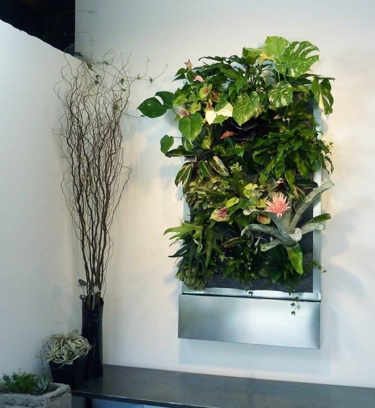 vertikaler garten mit exotischen pflanzarten innen anlegen, Garten seite