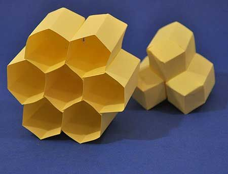 Bees Create Arrays Of Hexagonal Cells In A Beehive