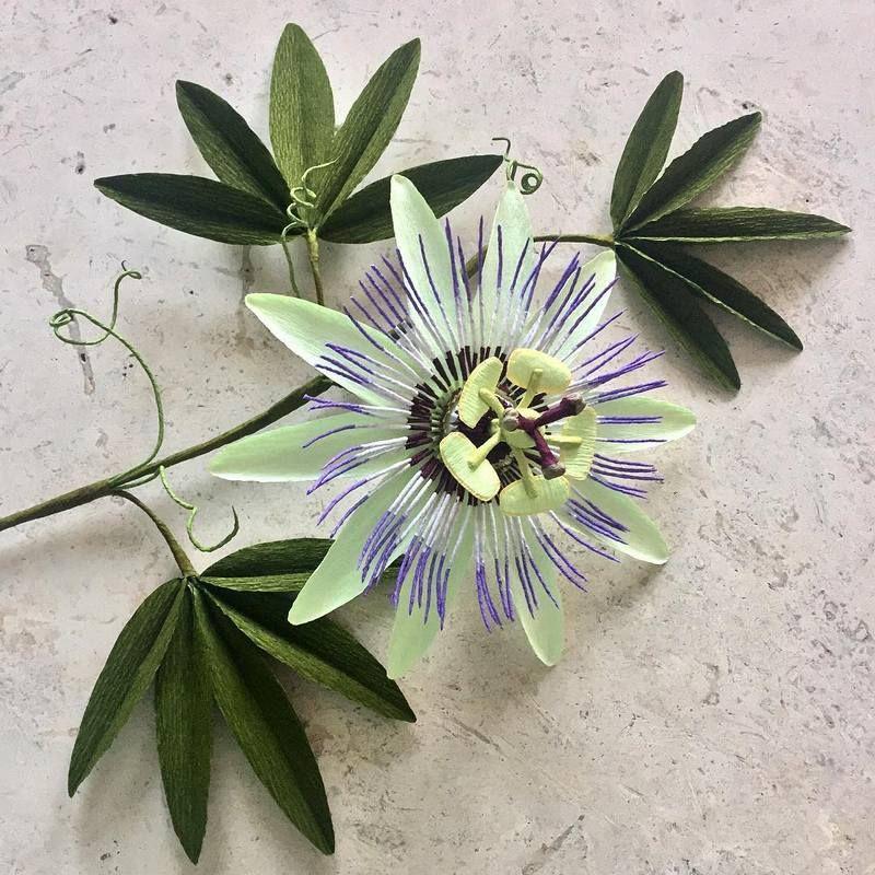 Photo of Бумажные цветы Tiffany Holloway