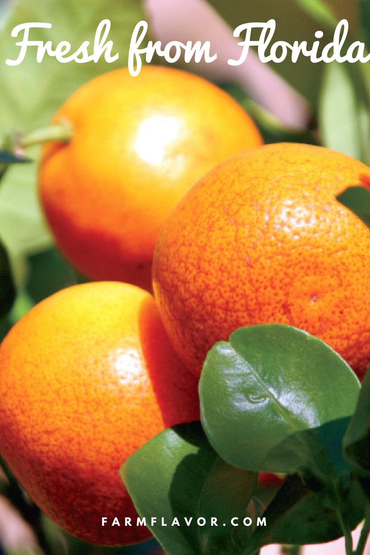 Why Fresh Florida Produce is Always in Season Food cost
