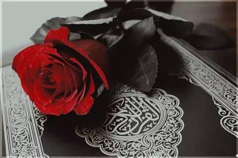 Coran Quran Karim Sourate Prophete Islam Religion Allah Livre