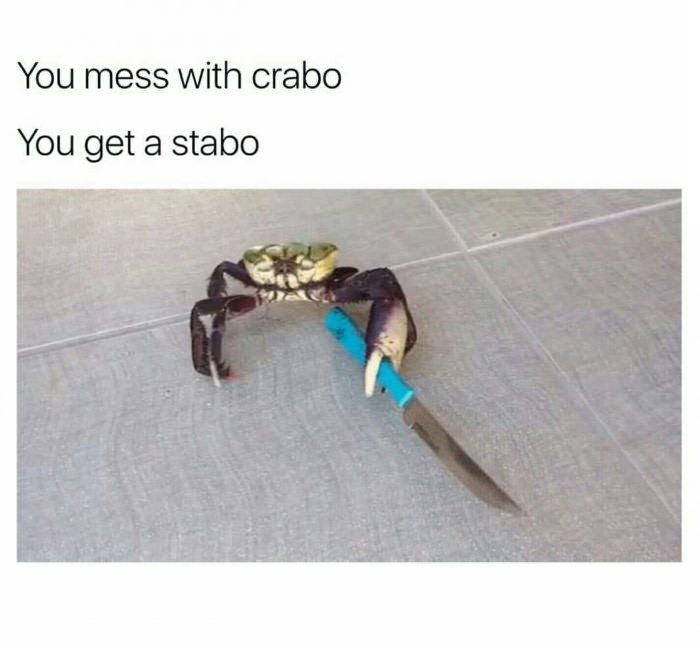 Don T Mess With Crabo Funny Relatable Memes Roblox Memes Clean Funny Memes