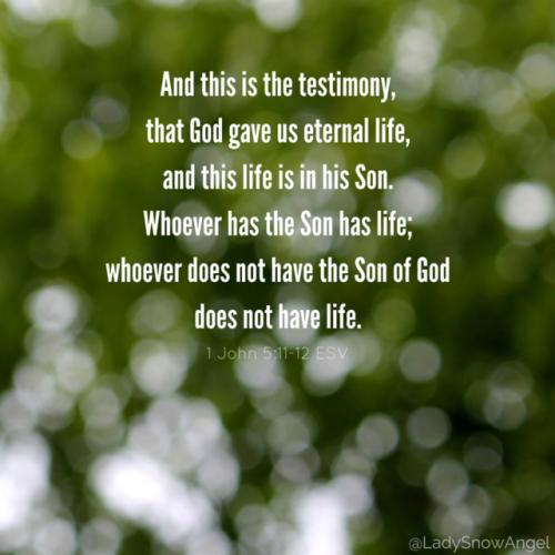 1 John 5:11-12 ESV   This Is What We Believe   Bible verse