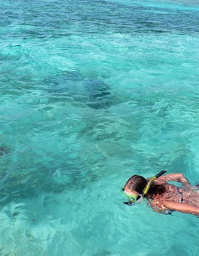 Snorkeling In Belize (With Images)