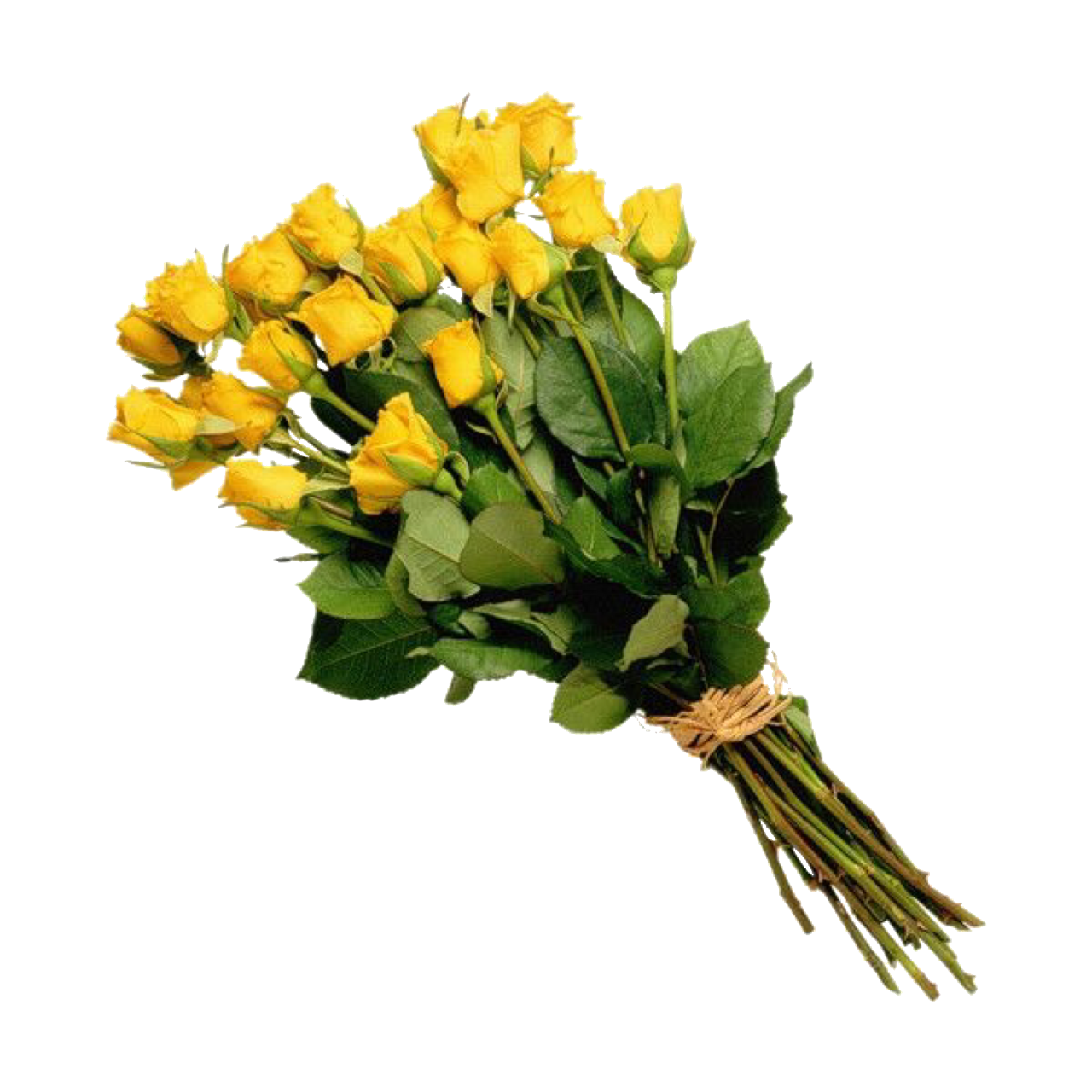 Pin by Sophia on pngs in 2019 Yellow rose bouquet