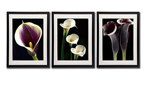 Calla Lily Wall Decor Art Prints Posters 18x24 Black Frame White Mat ...