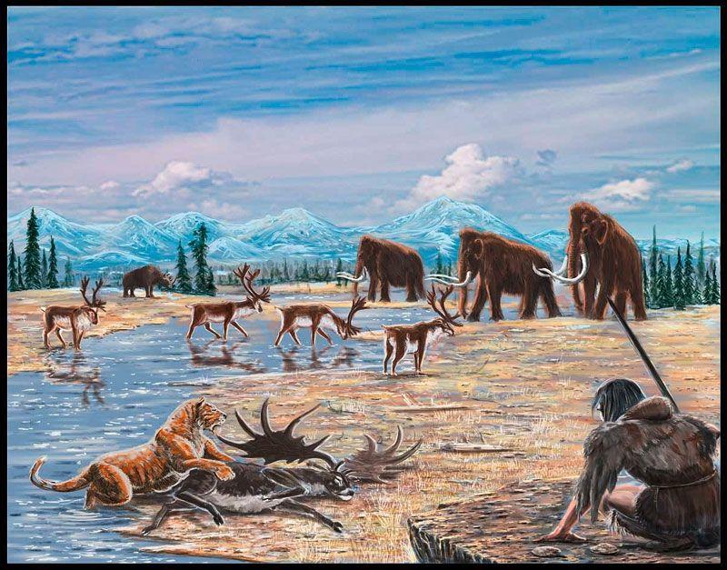 честь жизнь в ледниковом периоде картинки картинки