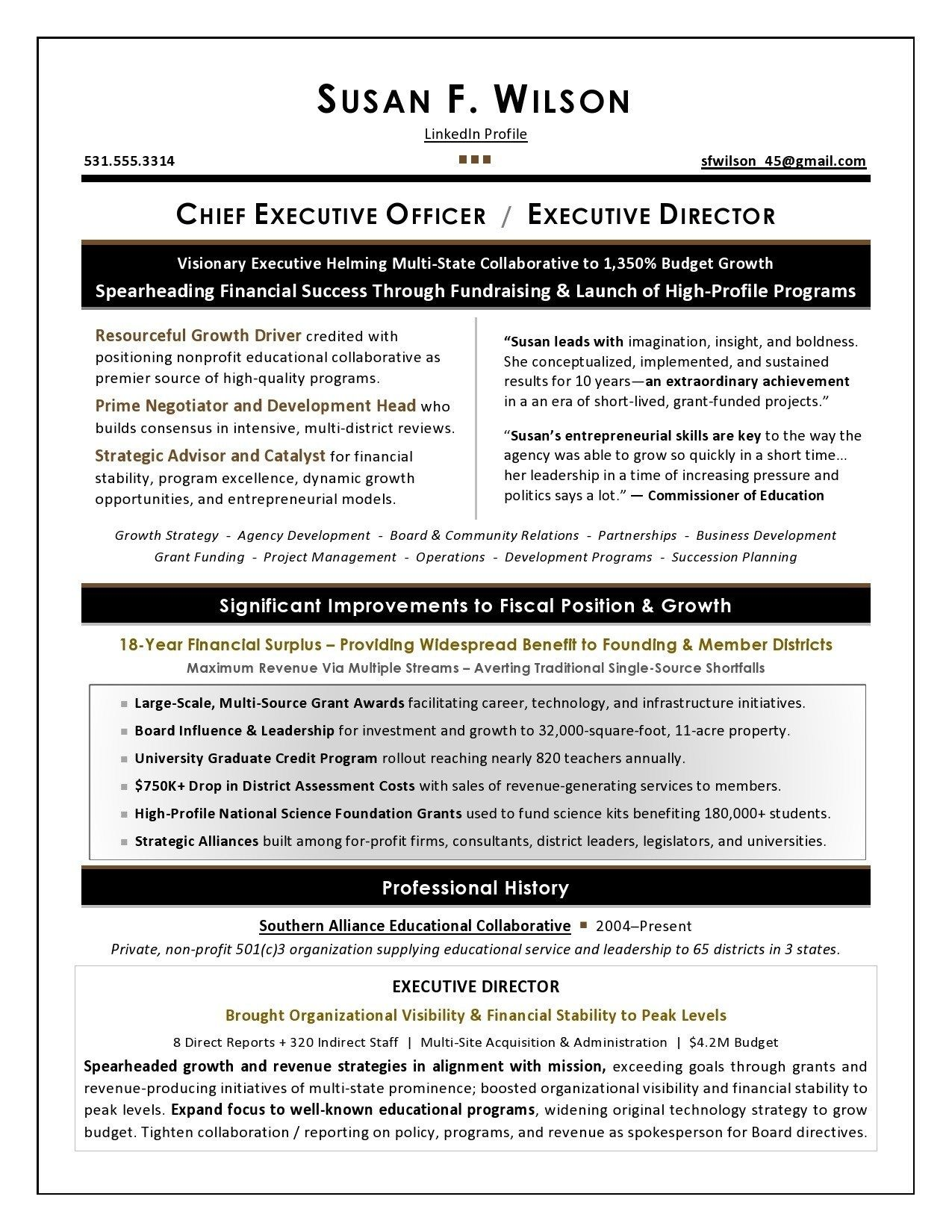 Resume Examples Nonprofit Resume Templates Resume Examples Executive Resume Template Resume Template Examples