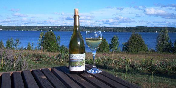 Bel Lago Vineyards And Winery Wine Tasting Tours Wine Tour Traverse City Wineries