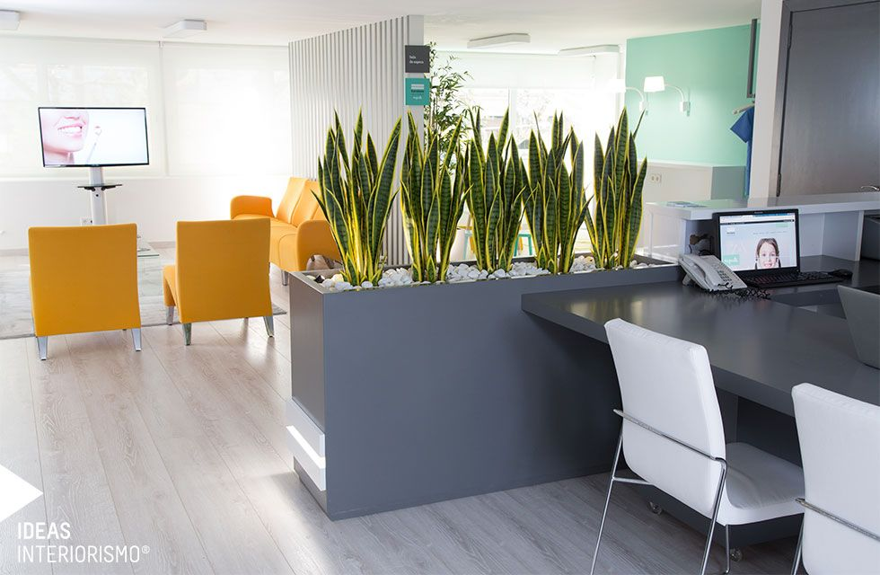 Cl nica dental decoraci n de interiores en valencia - Decoracion de clinicas dentales ...