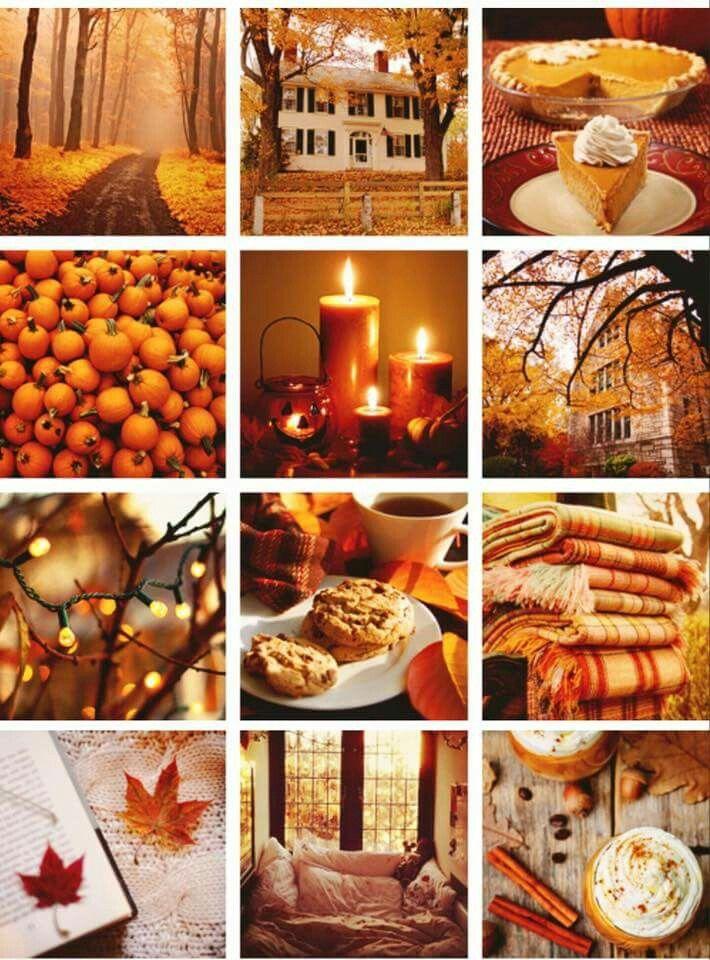Pin On Fall And Halloween