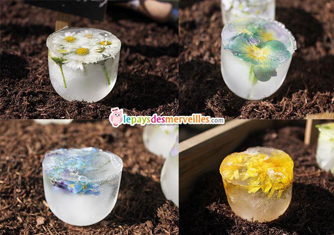 des gla ons de fleurs pour des fleurs ternelles ou. Black Bedroom Furniture Sets. Home Design Ideas