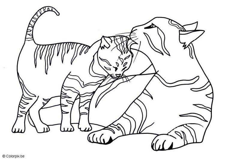 Malvorlage Katzen | prim crafts | Pinterest | Malvorlage katze ...