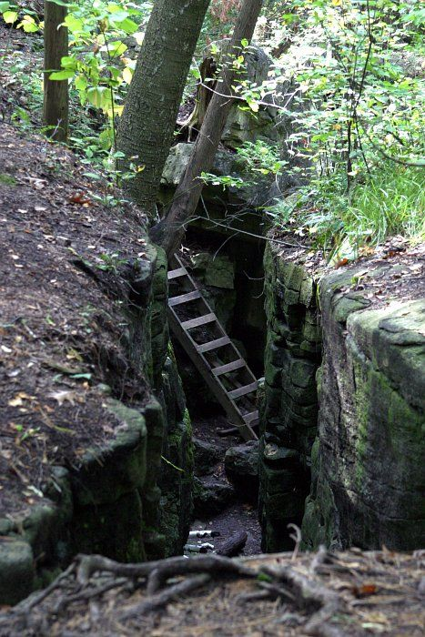 the ladder at the hole in the wall limehouse trail on hole in the wall id=48242