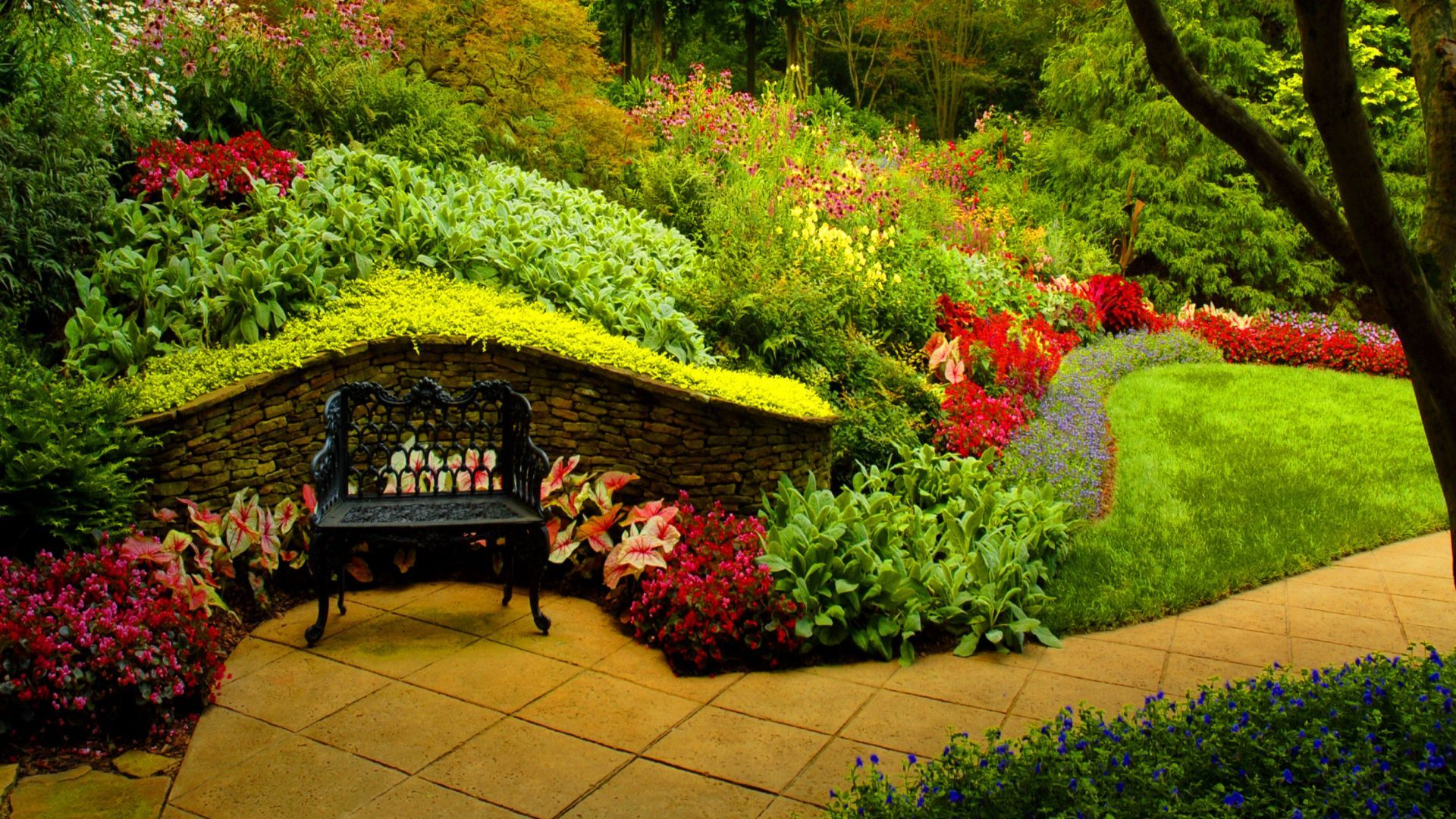 Park Bench and Beautiful Spring Flowers Nature View