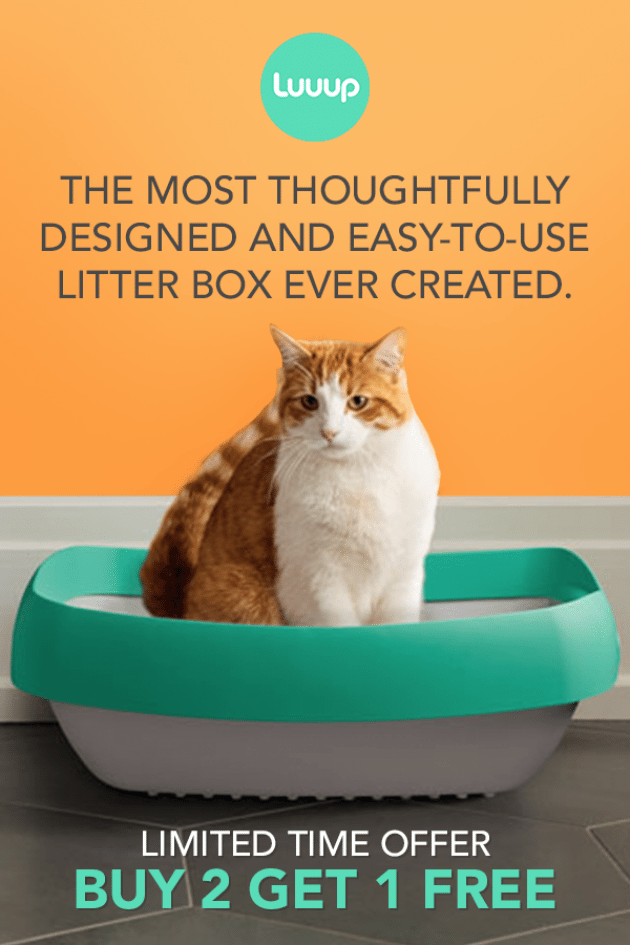 Toss Your Scoop And Ditch Your Litter Liner Meet The Only Litter Box Youll Want To Come Home To Ragdollcats Ragdoll Cats Litter Box Litter Litter Liners