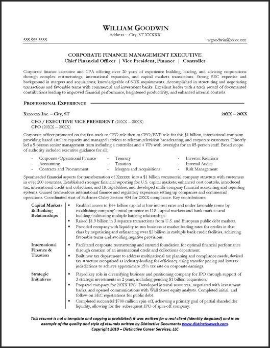 Financial Executive  Cfo Resume Example  JOB
