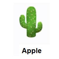 Meaning of 🌵 Cactus Emoji | Emoji, Ios emoji, Emoji design