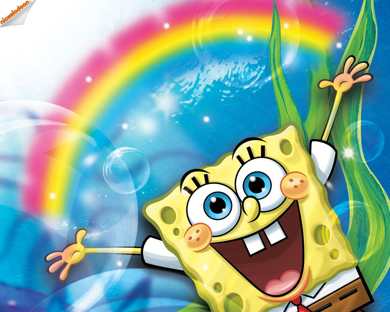 Spongebob S Age Spongebob Wallpaper Spongebob Spongebob Birthday