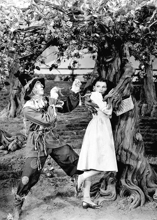 Wizard of Oz 10x8 Classic Photo Movie Still