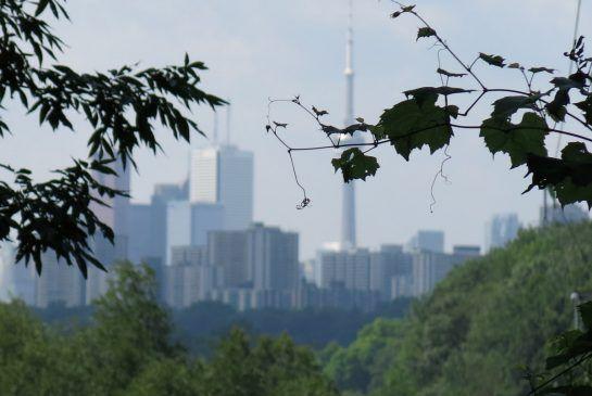 Torontos Don River: from trash to natural treasure