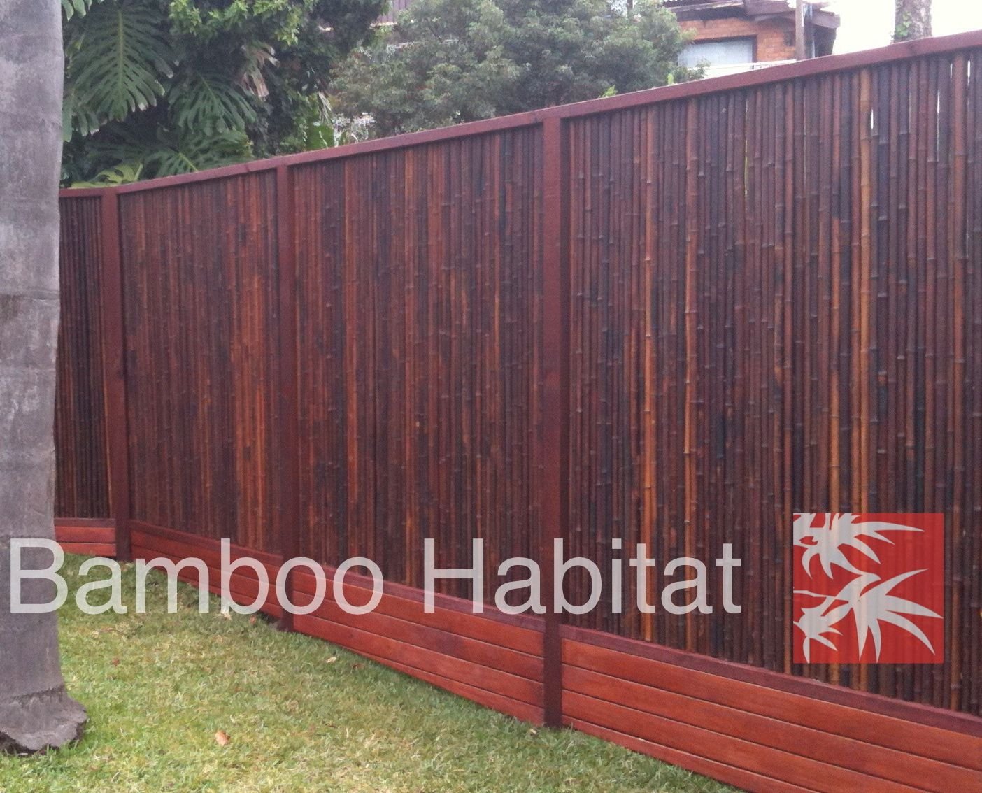 Bamboo fencing gorg outdoor living pinterest for Outdoor privacy fence screen