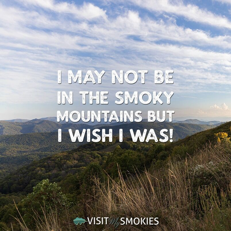 Do you wish you were in the Smoky Mountains RIGHT NOW? in
