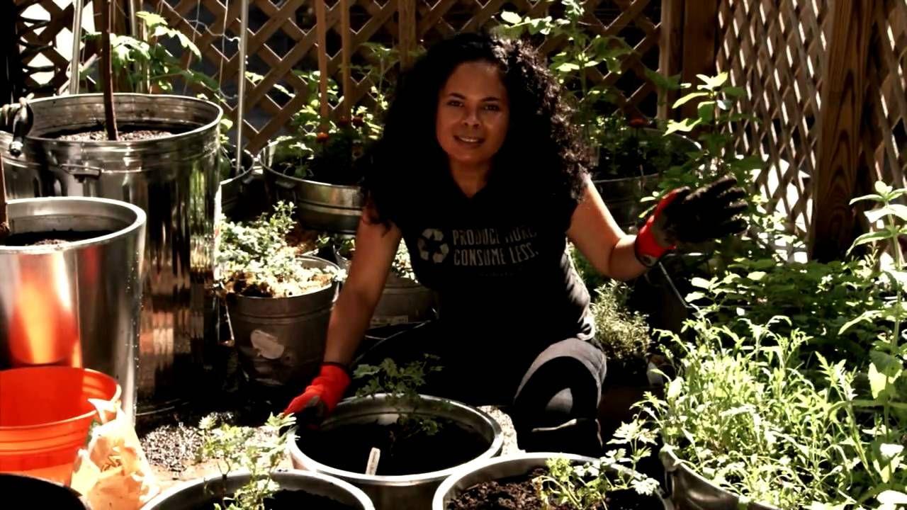 Medium Of You Tube Container Gardening